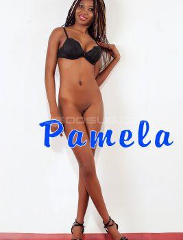 Индивидуалка Pamela, 21 лет, №2266